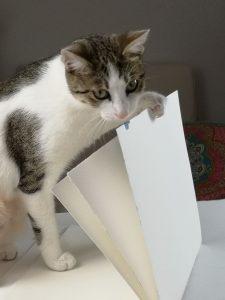 Art Journal Katze
